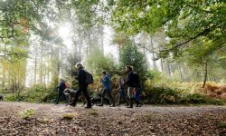 Record numbers of people enjoy a walk in the Park