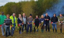 New Forest habitats get business boost
